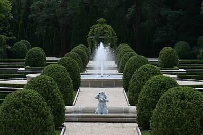 Photograph - The Garden by Paul SEQUENCE Ferguson             sequence dot net