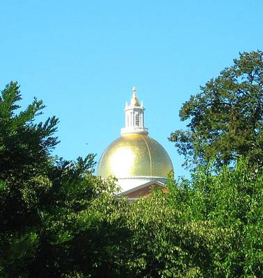 The Gold Dome Art Print by Bruce Carpenter