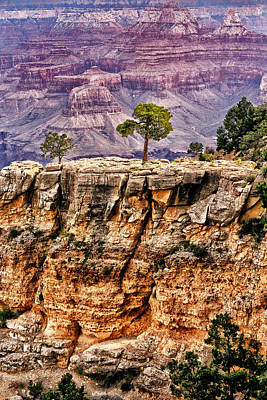 The Grand Canyon Iv Art Print by Tom Prendergast