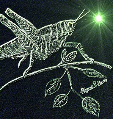 Grasshopper Digital Art - The Grasshopper by Maria Urso