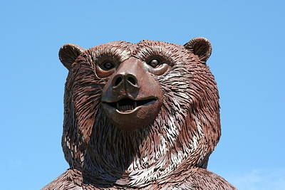 The Great Bear Art Print by Alan Derber