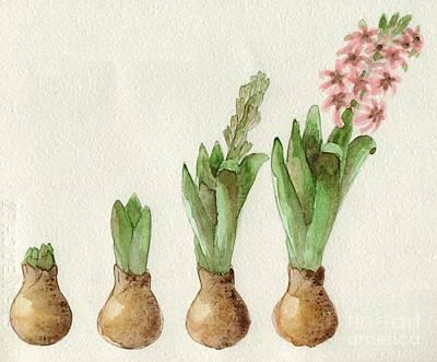 Painting - The Growth Of A Hyacinth by Annemeet Hasidi- van der Leij