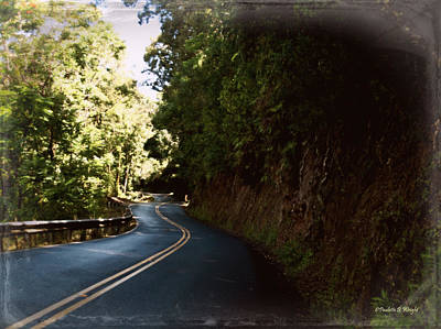 Photograph - The Hana Highway by Paulette B Wright