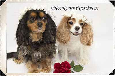 The Happy Couple Art Print by Daphne Sampson