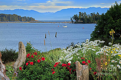 The Harbor At Sooke Art Print by Louise Heusinkveld