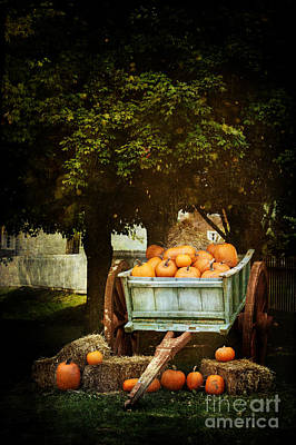 Hay October Photograph - The Harvest by Stephanie Frey
