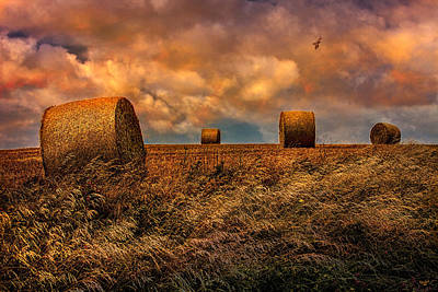 The Hayfield Art Print by Chris Lord