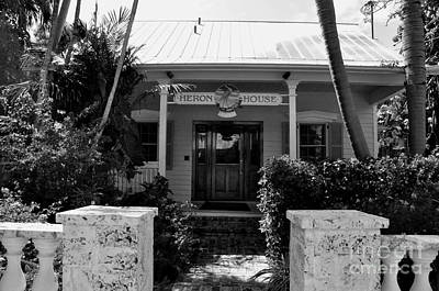 Photograph - The Heron House Key West Florida by John Black
