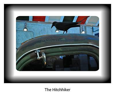 Chev Pickup Photograph - The Hitchhiker by Daryl Macintyre