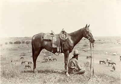 The Horse Wrangler, Photograph By Erwin Art Print by Everett