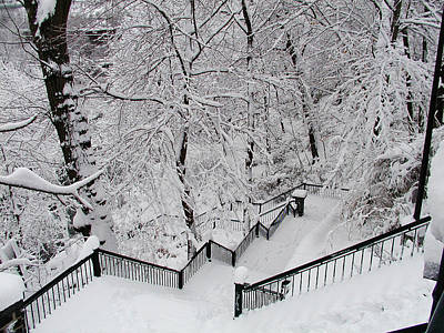 Manayunk Photograph - The Hundred Steps In The Snow by Bill Cannon