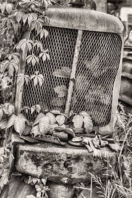 Poison Ivy Photograph - The Ivy League V Bw by JC Findley