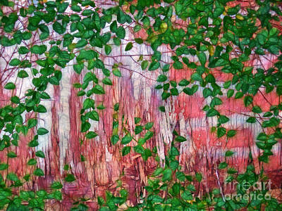 Photograph - The Ivy On The Wall by Judi Bagwell