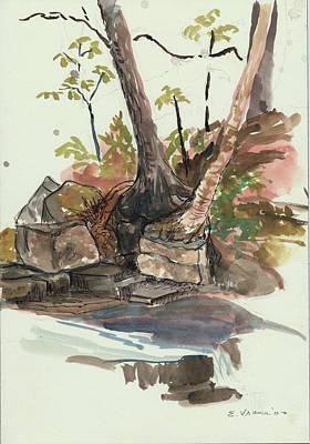 The Jessup Indian Lake Ny Art Print by Ethel Vrana