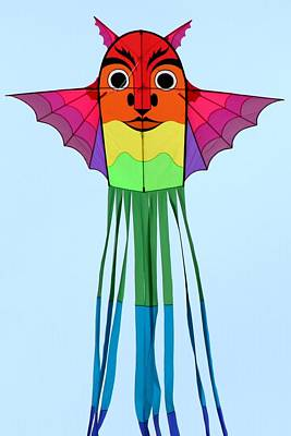Photograph - The Kite by Ed Lukas