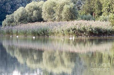 Czintos Photograph - The Lake Reflection by Odon Czintos