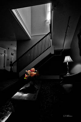 Photograph - The Landing by Christopher Holmes