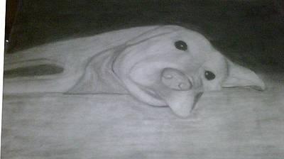 Lazy Dog Drawing - The Lazy Dog by Calvin Nix