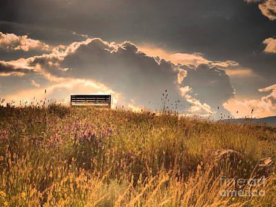 Photograph - The Light Bench by Tara Turner