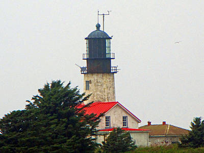 Photograph - The Lighthouse Of Tatoosh by Tikvah's Hope
