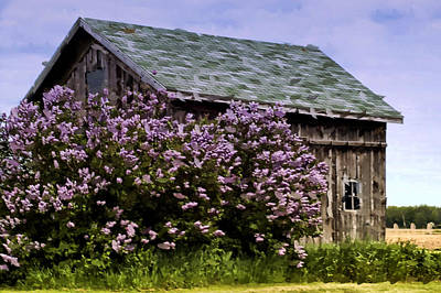 The Lilac Barn Art Print by Cheryl Cencich