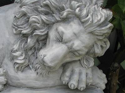 The Lion Sleeps Tonite Art Print