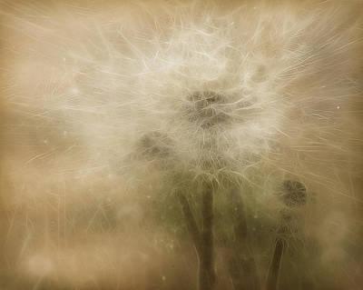 Dandelion Digital Art - The Lions Of Spring by Hazel Billingsley