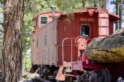 Photograph - The Little Red Caboose by Donna Greene