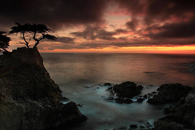 The Lone Cypress Observes A Pebble Beach Sunset Art Print by Dave Sribnik