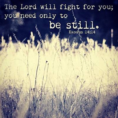Inspirational Photograph - the Lord Will Fight For You; You Need by Traci Beeson