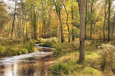 Dappled Light Photograph - The Lost Creek by Cindy Rubin