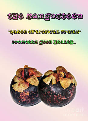 The Mangosteen - Queen Of Tropical Fruits Print by Kaye Menner