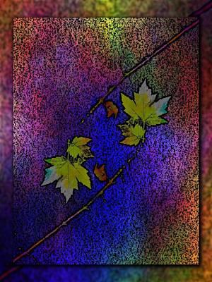 Red Leaf Digital Art - The Maple 7 by Tim Allen