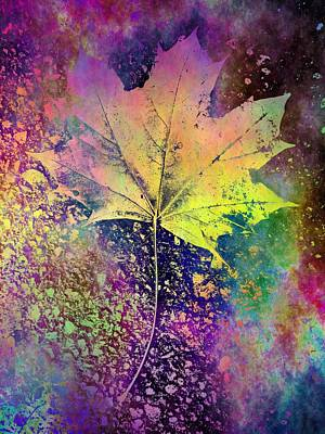 Digital Art - The Maple by Tim Allen