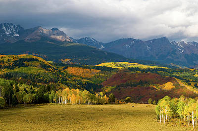 Rocky Mountains Photograph - The Meadow by Steve Stuller