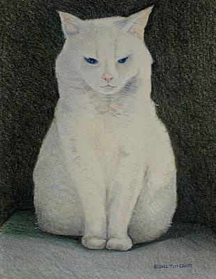 The Meditating Cat Art Print
