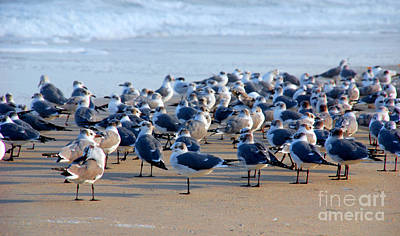Fourteen Photograph - The Monday Morning Meeting by Susanne Van Hulst