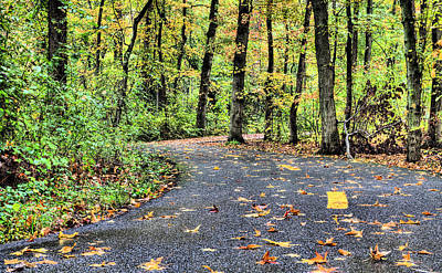 Photograph - The Mount Vernon Trail. by JC Findley