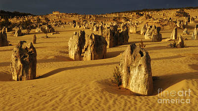 Photograph - Australia Nambung Desert 6 by Bob Christopher