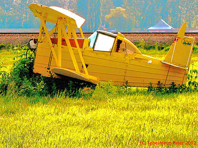 The Old Crop-duster Art Print