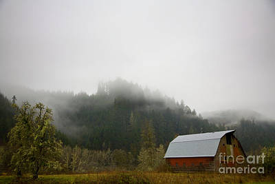 Photograph - The Old Red Barn by Timothy Johnson