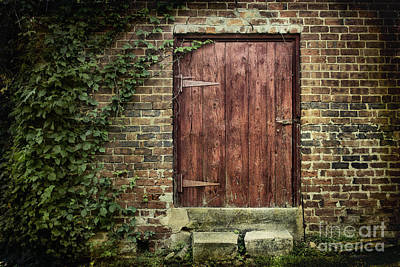 Rural Decay Digital Art - The Old Red Door by Sari Sauls