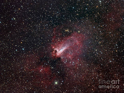 The Omega Nebula Print by Filipe Alves