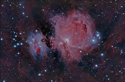 Photograph - The Orion Nebula M42 by Dale J Martin