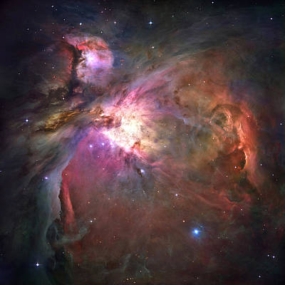 The Orion Nebula Was Born In Enormous Art Print by Nasa