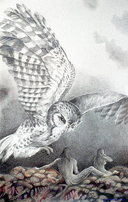 Drawing - The Owl Of Athena by Kyra Belan
