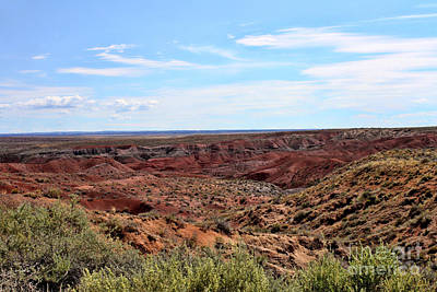 Ethereal - The Painted Desert by Tommy Anderson