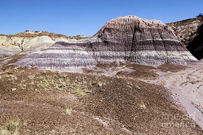 Photograph - The Painted Valley by Adam Jewell