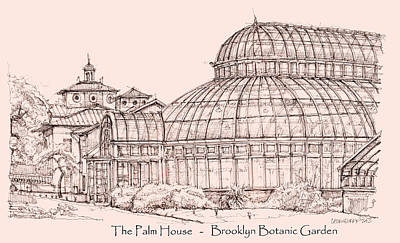 Lee-ann Drawing - The Palm House In Pink by Building  Art