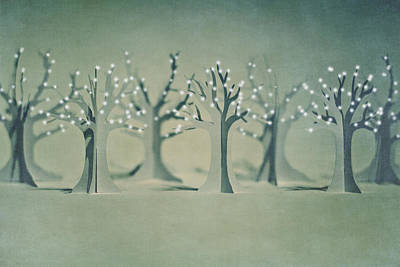 On Paper Photograph - The Paper Forest by Image by Catherine MacBride